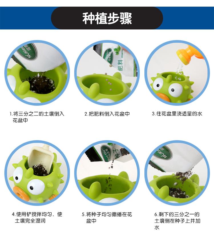 创意diy手工制作可爱卡通造型小丑鱼植物盆栽康乃馨